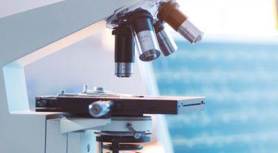 potenciamos talentos dbc distribuciones biocentificas